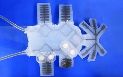 Improving autonomy in soft robots using magnetic fluids