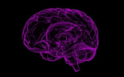 Guideomics to live up to the promise of biotechnology for precision medicine of brain diseases