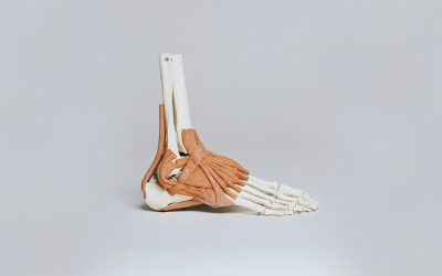 Pillar of support: Breakthrough discovery could speed up bone implant recovery