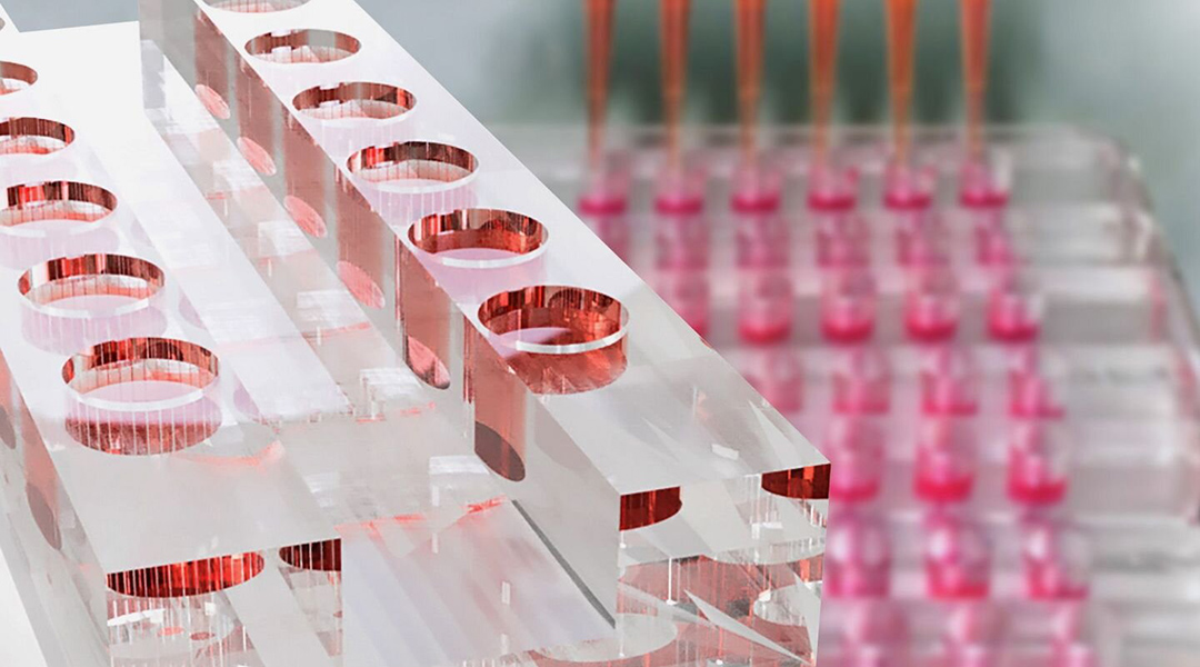 A biochip with organ-specific tissue models for advanced drug screening