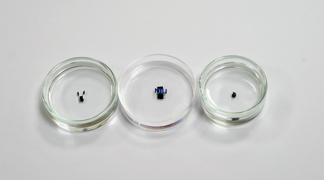 Rice-sized robots maneuvered with magnetic fields