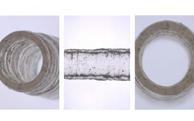 Engineers grow 3D-bioprinted blood vessel