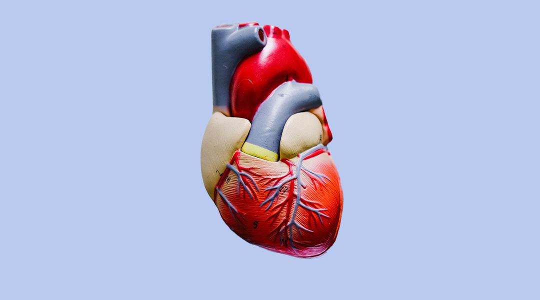 Spiral polymer stents treat coronary artery disease